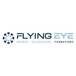 Logo Flying Eye