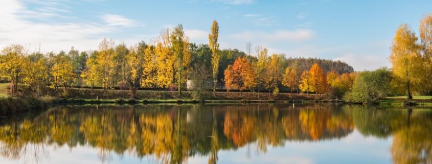 Les zones Natura 2000 et les vols de drone sur Clearance